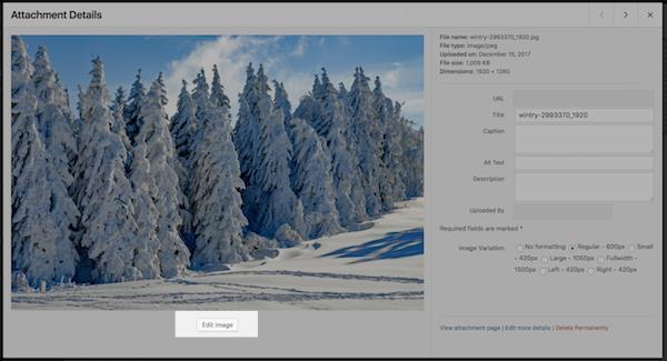 Plugins para controlar conteúdo visual - 2WP